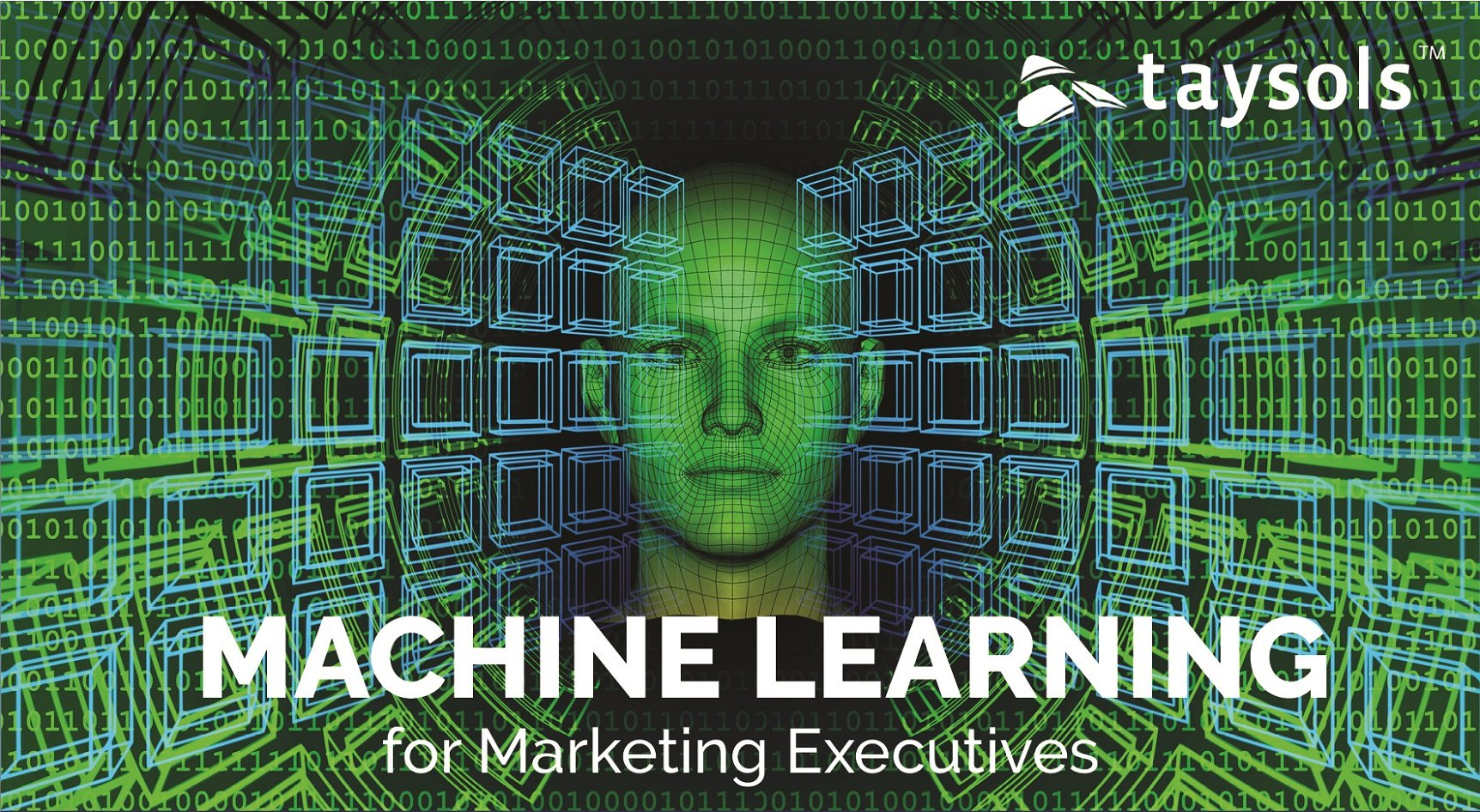 ML for Marketing Execs