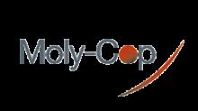 Moly Cop taysols client